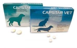Capstar-vet