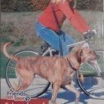 Cykel-og-Joggingline-1