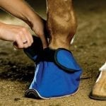 EQUIVET-Slipper-2