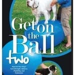 KRUUSE-Rehab-Get-on-the-Ball-DVD-II
