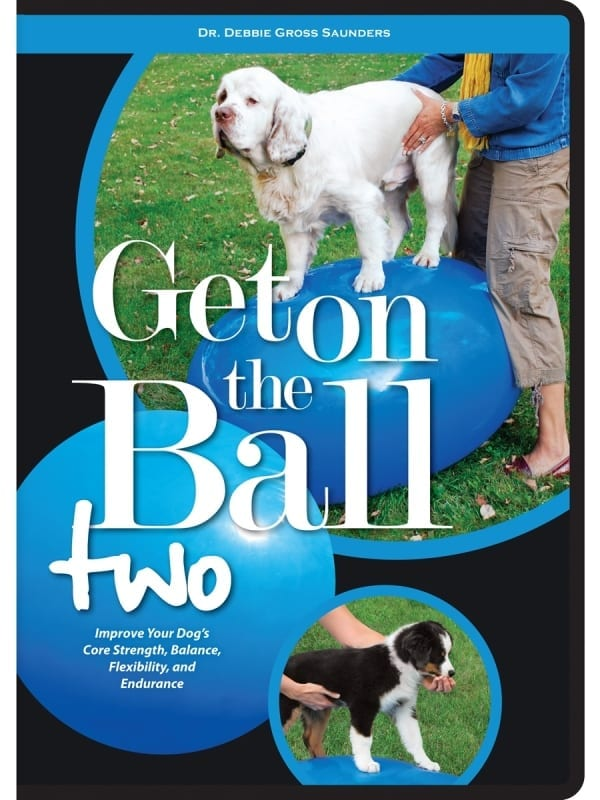 Rehab Get on the Ball DVD II