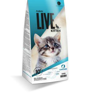 LIVE_Cat_Kitten_Chicken